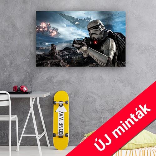 Star Wars vászonképek